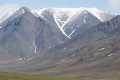 ArcticInSpring-OR-Denali_DaltonHwy_HughRose-1